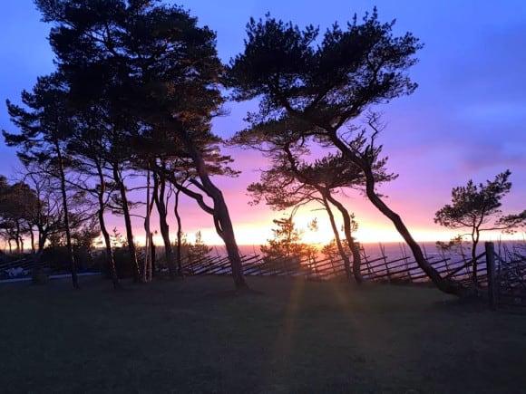 Solnedgång i Brissund