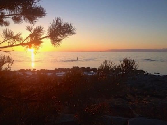 Gotland kan absolut bli ett av världens mest spännande resmål inom vissa områden
