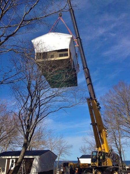 Fågelbo eller trädkoja – kan de behöva bygglov?